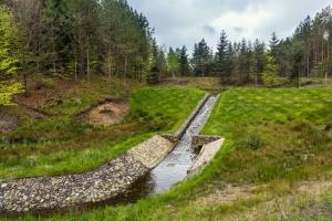 UE dofinansuje projekty Lasów Państwowych